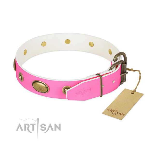 Corrosion resistant fittings on natural leather dog collar for your four-legged friend