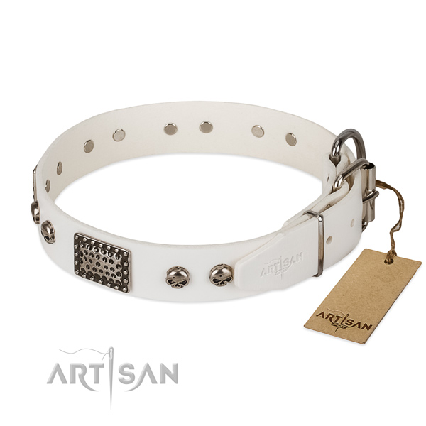Strong embellishments on basic training dog collar