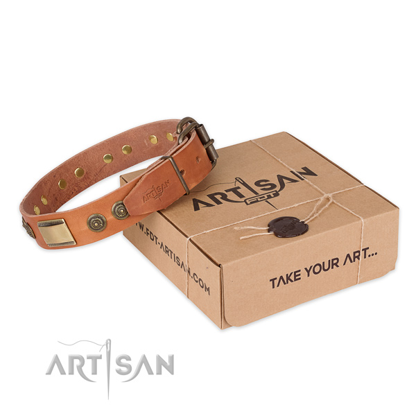 Reliable hardware on full grain natural leather dog collar for comfy wearing