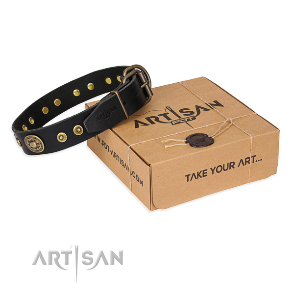 Full grain leather dog collar made of top notch material with rust-proof buckle