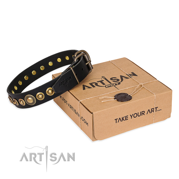 Reliable leather dog collar handcrafted for stylish walking
