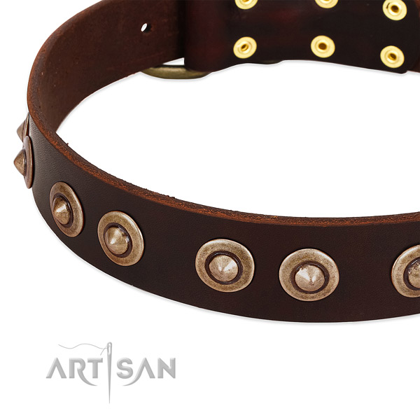 Rust-proof adornments on leather dog collar for your pet