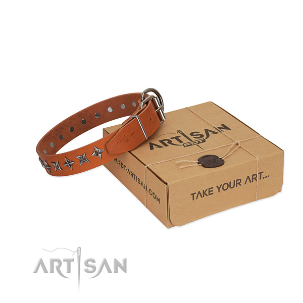 Everyday walking dog collar of durable full grain leather with adornments