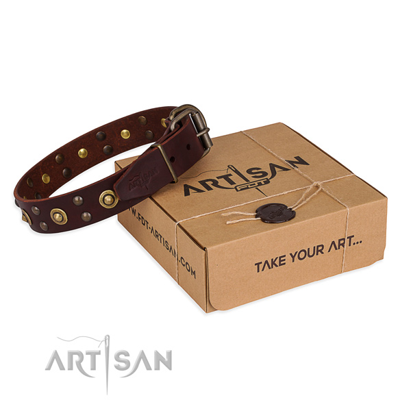 Rust-proof buckle on leather collar for your lovely doggie