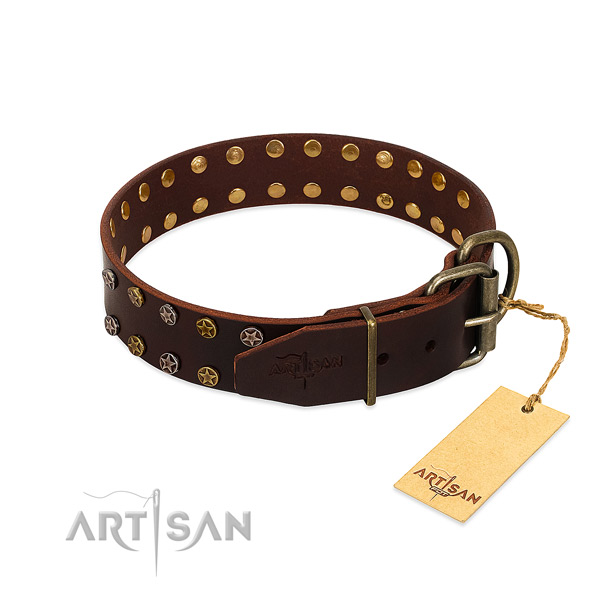 Fancy walking full grain natural leather dog collar with awesome embellishments