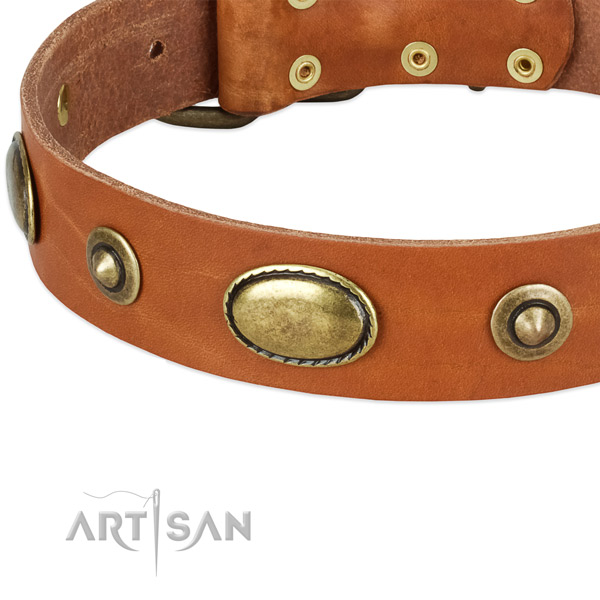 Strong hardware on natural leather dog collar for your pet