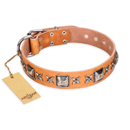 """Glamour Finery"" FDT Artisan Female German Shepherd collar of natural leather with stylish old-looking circles"