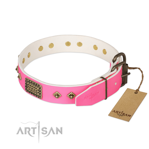 Durable hardware on walking dog collar