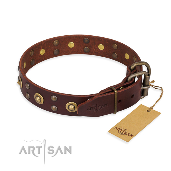Rust resistant hardware on leather collar for your handsome pet