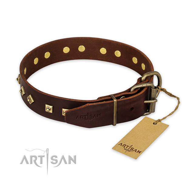 Strong buckle on genuine leather collar for basic training your dog