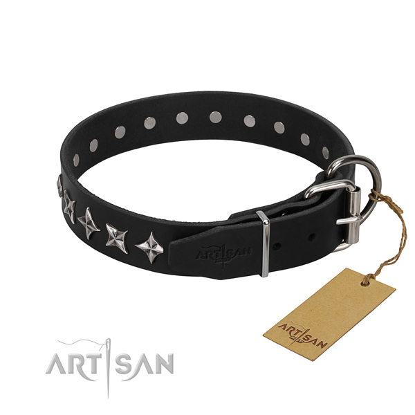 Walking adorned dog collar of top quality genuine leather
