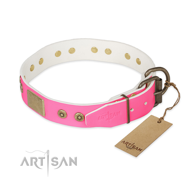 Corrosion resistant adornments on basic training dog collar