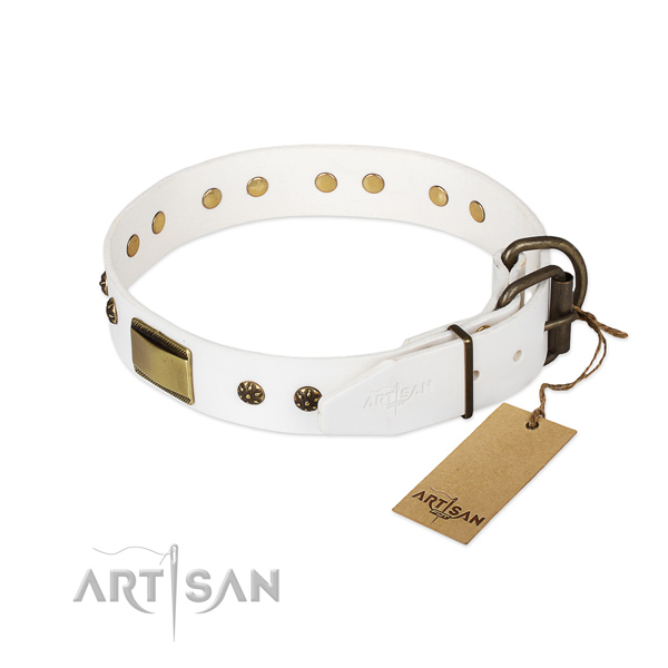 Leather dog collar with durable fittings and decorations