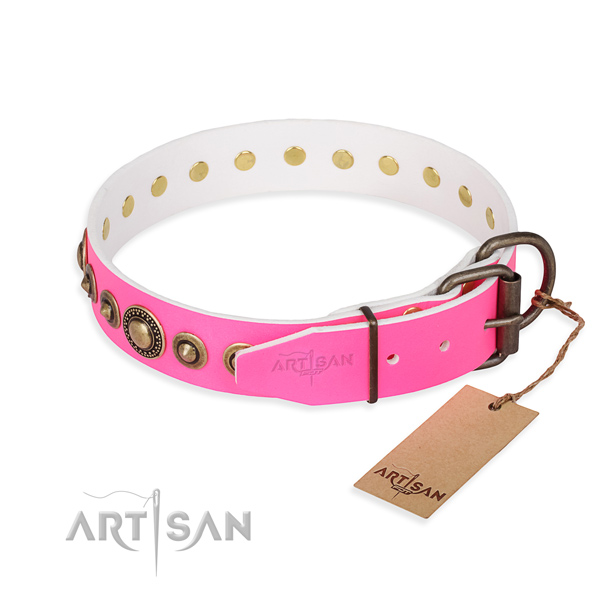 High quality full grain natural leather dog collar made for everyday walking