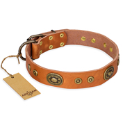 """Dandy Pet"" FDT Artisan Handcrafted Tan Leather German Shepherd Collar"