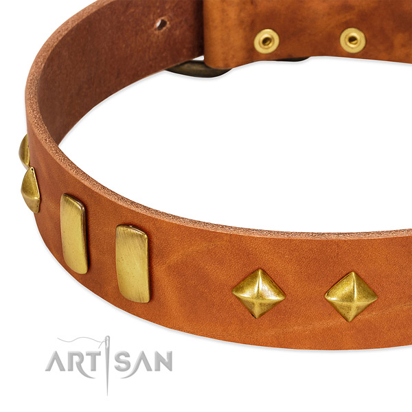 Everyday use natural leather dog collar with exquisite decorations