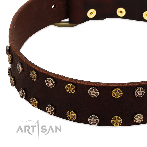 Easy wearing leather dog collar with stunning embellishments