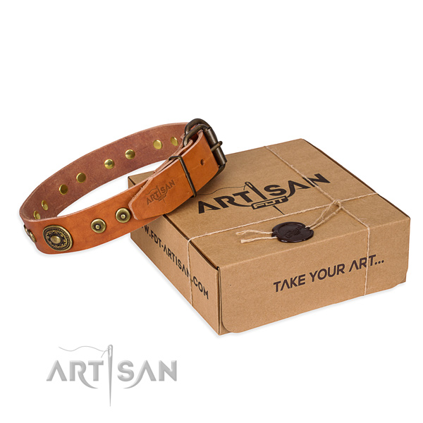 Full grain leather dog collar made of top notch material with reliable fittings