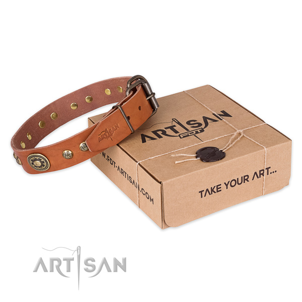 Rust-proof fittings on full grain genuine leather dog collar for walking