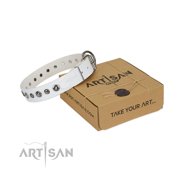 Best quality natural leather dog collar with stylish design adornments