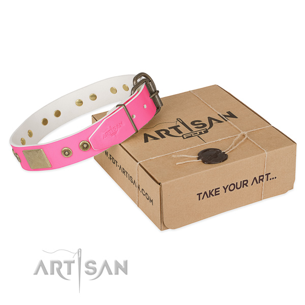 Rust resistant traditional buckle on dog collar for comfy wearing