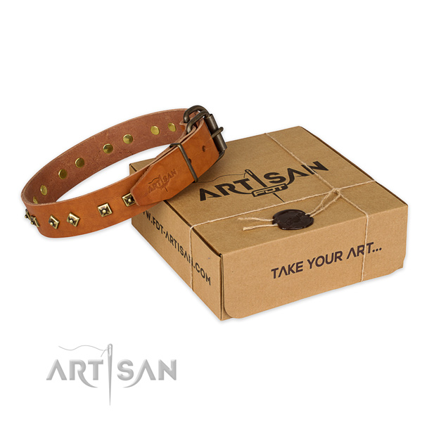 Corrosion proof buckle on natural leather dog collar for comfortable wearing