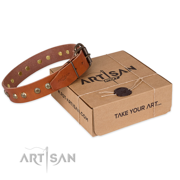 Reliable fittings on genuine leather collar for your handsome dog