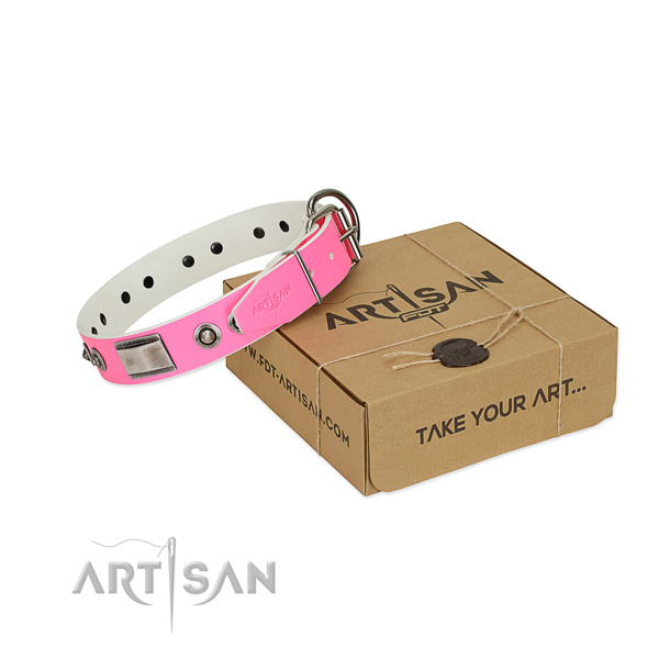 Amazing full grain leather collar with adornments for your pet
