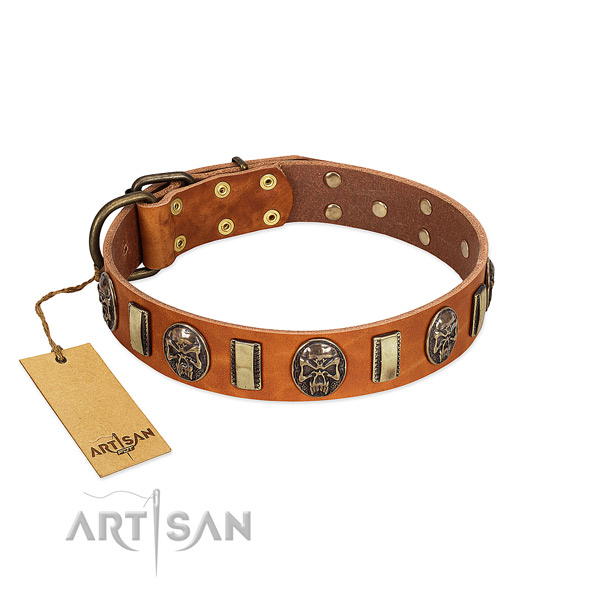 Exquisite genuine leather dog collar for fancy walking