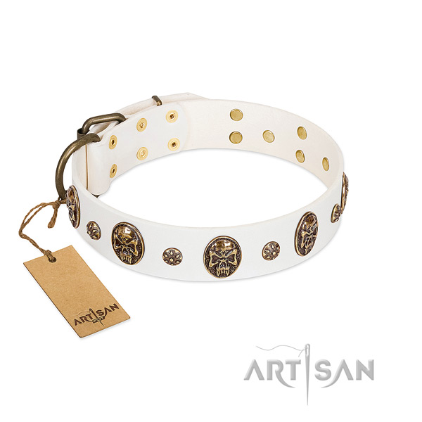 Adorned full grain leather collar for your four-legged friend