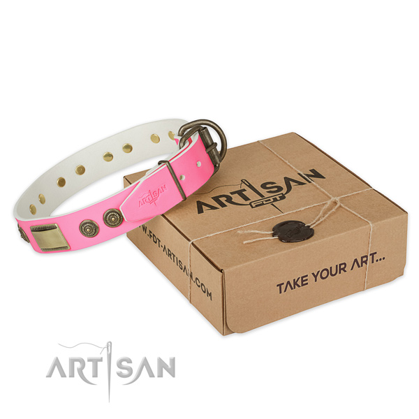 Durable D-ring on dog collar for handy use
