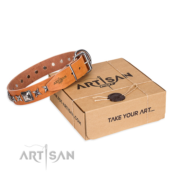 Walking full grain leather dog collar with adornments