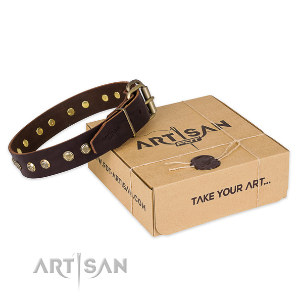 Strong buckle on full grain genuine leather collar for your beautiful four-legged friend