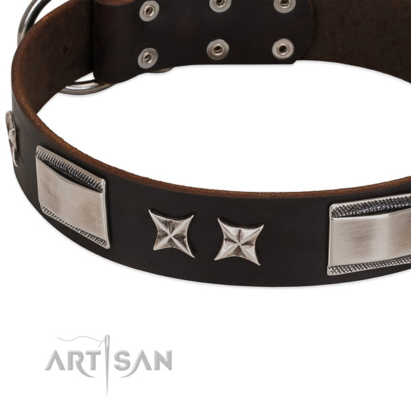 High quality full grain leather dog collar with rust-proof traditional buckle