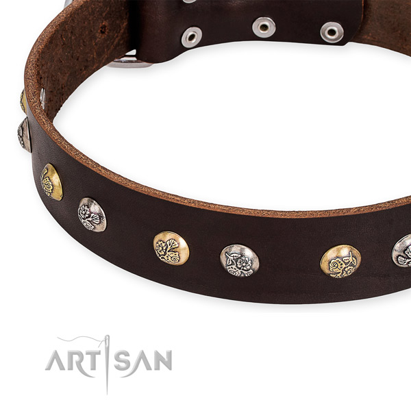Leather dog collar with designer corrosion proof studs