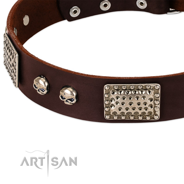 Rust-proof decorations on natural genuine leather dog collar for your four-legged friend