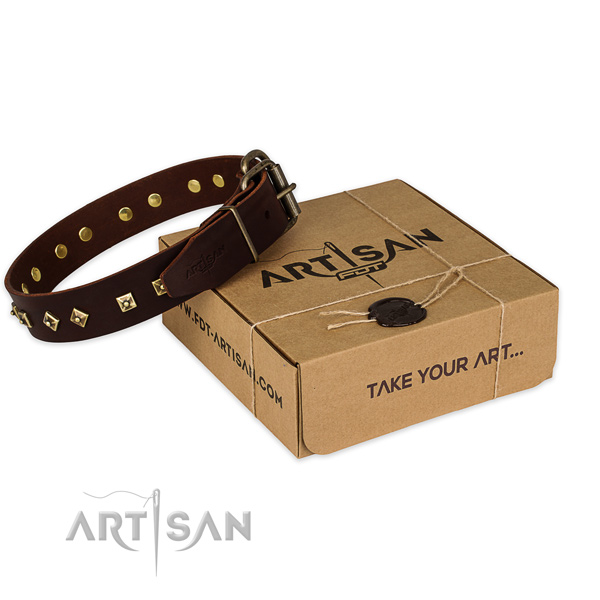 Reliable traditional buckle on full grain natural leather dog collar for daily use
