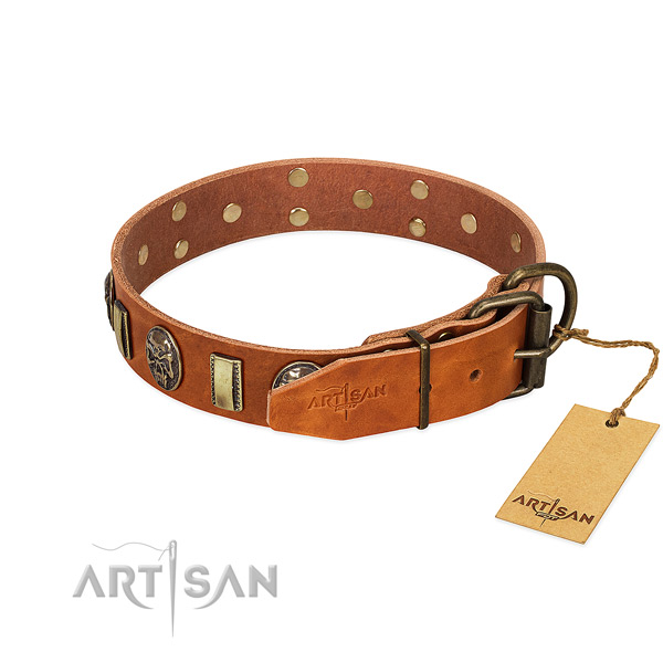 Genuine leather dog collar with reliable D-ring and embellishments