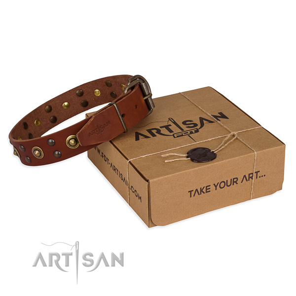 Rust-proof fittings on genuine leather collar for your beautiful canine