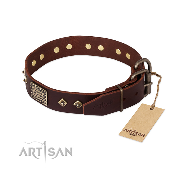 Genuine leather dog collar with rust resistant buckle and studs