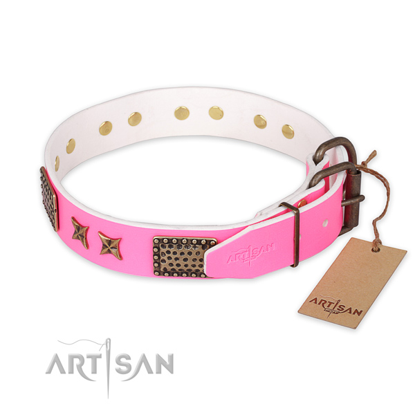 Durable D-ring on leather collar for your attractive doggie