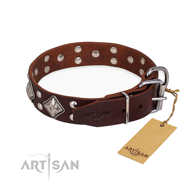 Full grain natural leather dog collar with inimitable corrosion resistant studs