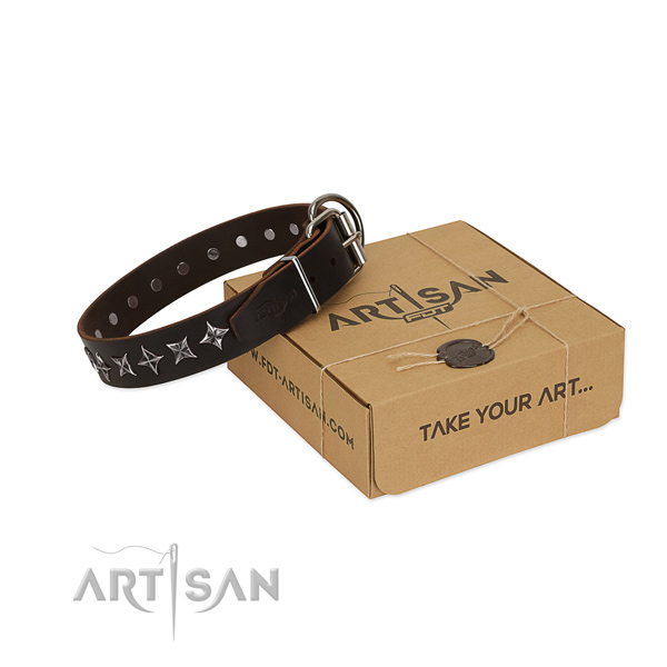 Daily use dog collar of quality leather with studs