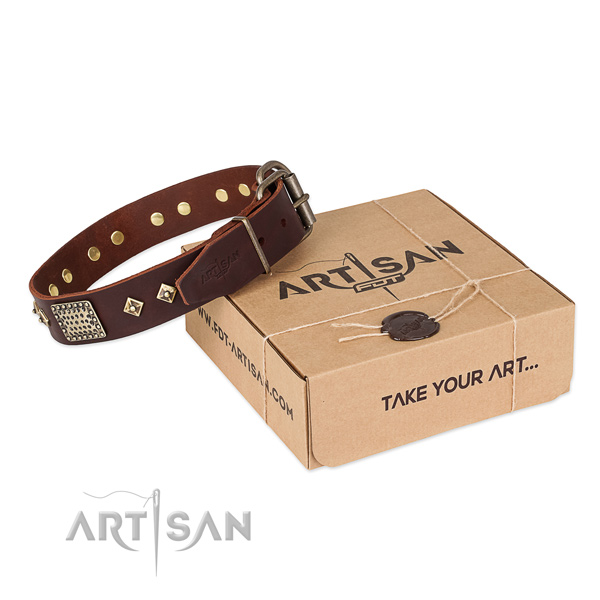 Easy adjustable genuine leather collar for your lovely pet