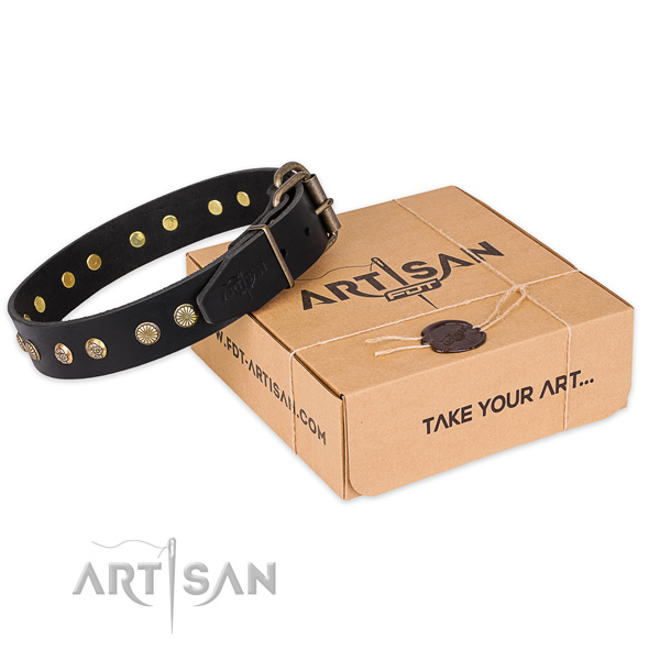 Reliable fittings on natural genuine leather collar for your impressive doggie