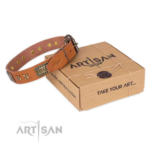 Reliable traditional buckle on full grain genuine leather collar for your lovely dog
