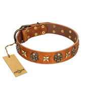 """Rockin' Doggie"" FDT Artisan Tan Leather German Shepherd Collar Adorned with Stars and Skulls"