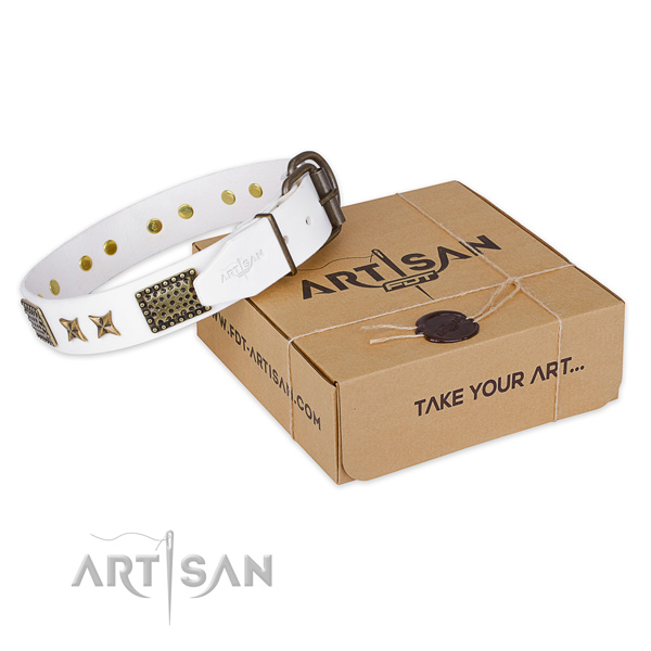 Durable traditional buckle on leather collar for your lovely pet