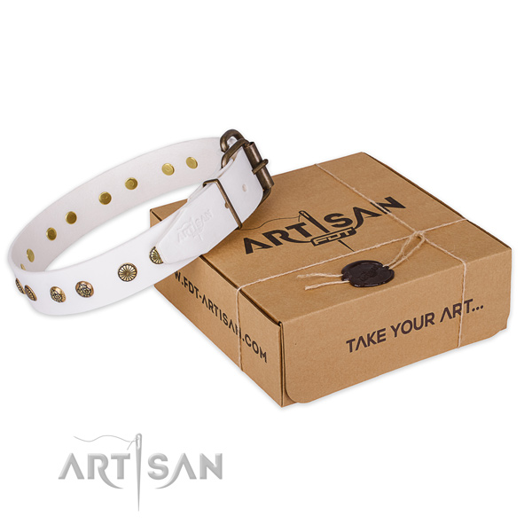Corrosion proof fittings on leather collar for your lovely four-legged friend