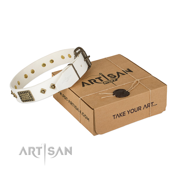 Decorated full grain genuine leather collar for your stylish pet